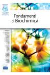 Fondamenti di Biochimica