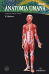 Seeley Anatomia Umana